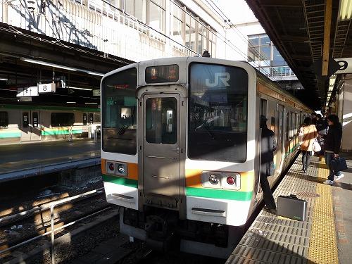 P1010766.jpg