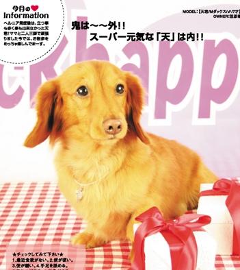 CKhappye_migi9.jpg