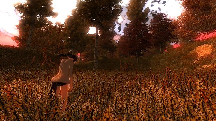 Oblivion 2012-07-27 06-38-40-30