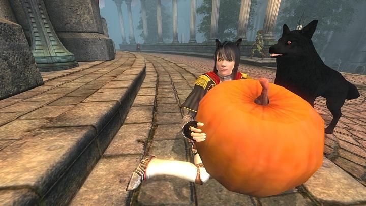 Oblivion 2012-10-04 18-18-03-91