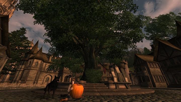 Oblivion 2012-10-07 19-08-48-15