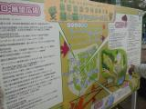 SBCA1853.jpg
