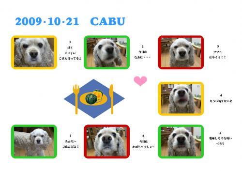 091021cabu1.jpg