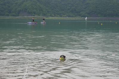 初めての西湖