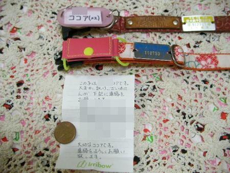 0114迷子札 (3)