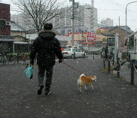0206雪 (3)