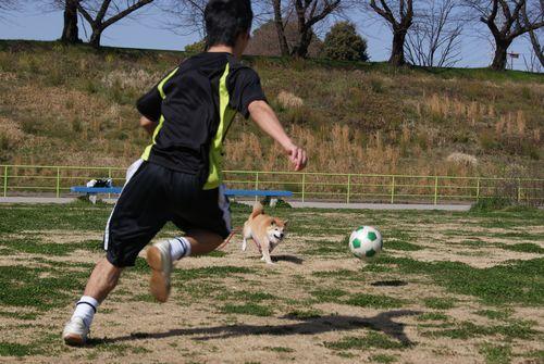 0314サッカー (2)