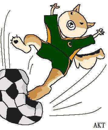 サッカーcocoa