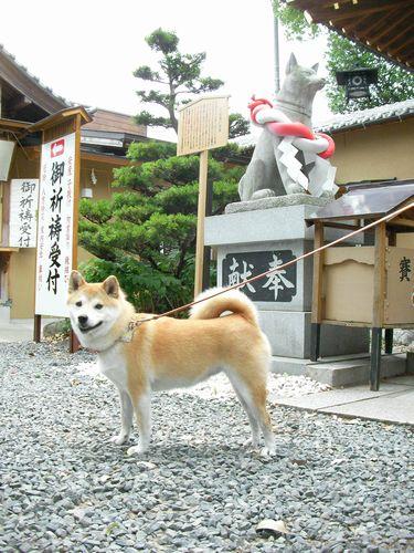 0613伊奴神社 (4)