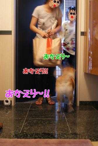 0703お帰り♪ (2)