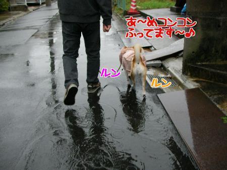 x7qEI_kU.jpg