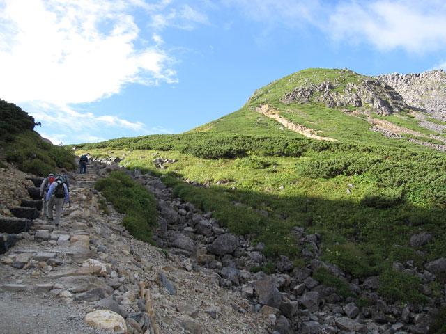短い登り道