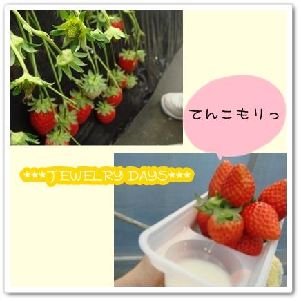 photo_189.jpg
