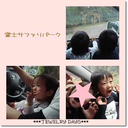 photo_234.jpg