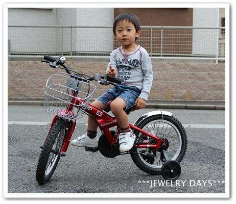 photo_247.jpg