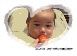 photo_35_20100408223111.jpg
