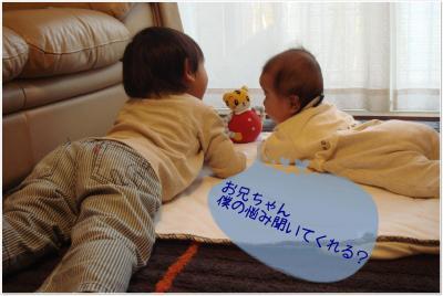 photo_37_20100414230647.jpg