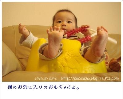 photo_48_20100516222342.jpg