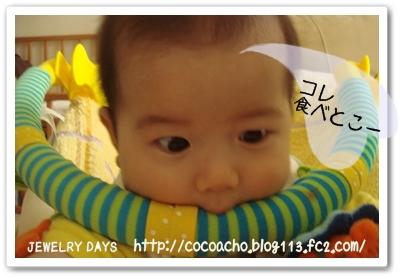 photo_54_20100603221855.jpg