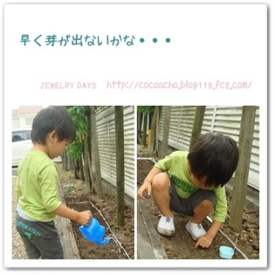 photo_57_20100608221830.jpg