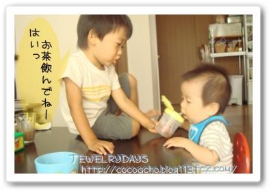 photo_87.jpg