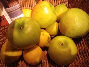pommes verts