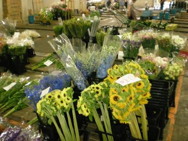 名古屋生花市場1