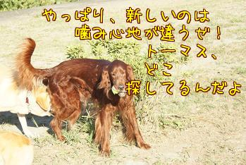3AifDRPw.jpg
