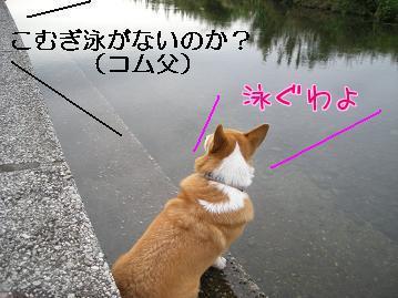 8CG_MOD4.jpg