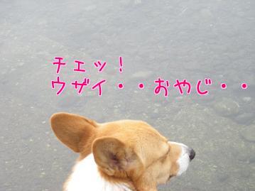 YI3uqApf.jpg