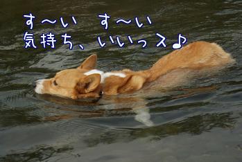 jZJYUN_2.jpg