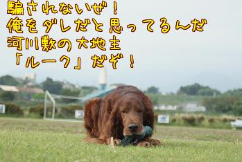 ok9wWAN_.jpg