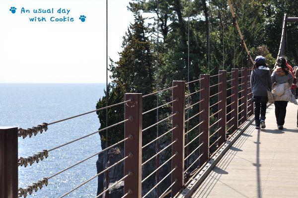 吊り橋_156