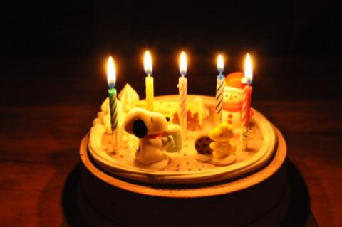 cake_483.jpg