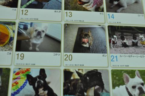 calendar2_428.jpg