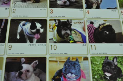 calendar3_429.jpg