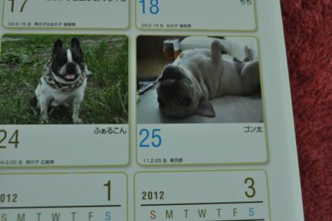calendar4_430.jpg