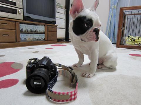 camera_781.jpg