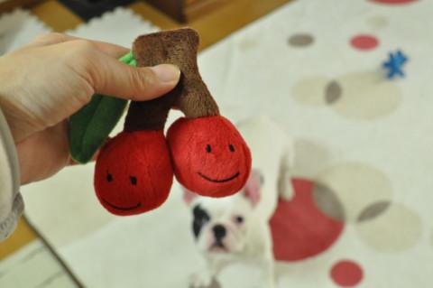 cherry_607.jpg