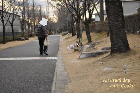 sanpomichi_936.jpg