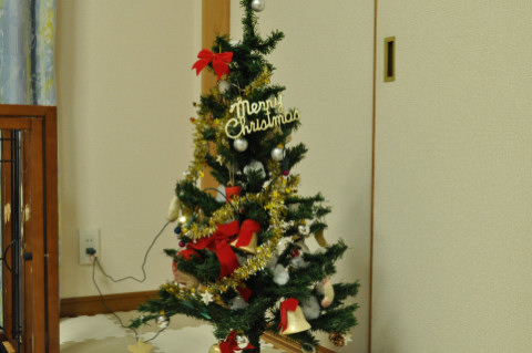 tree_482.jpg