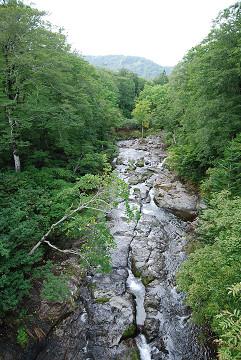 つり橋の渓流