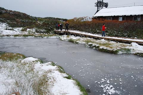 凍りついた池