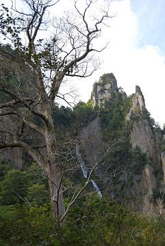 枯れ枝と山