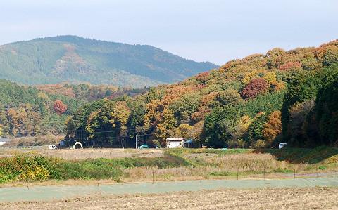 作手秋の山
