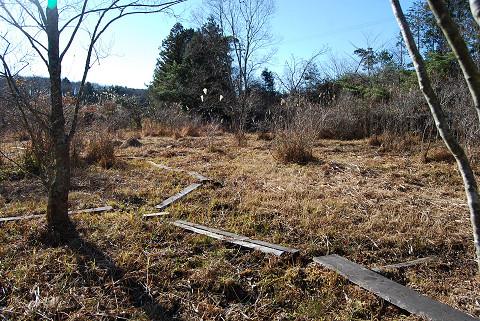長命湿地の草を刈った