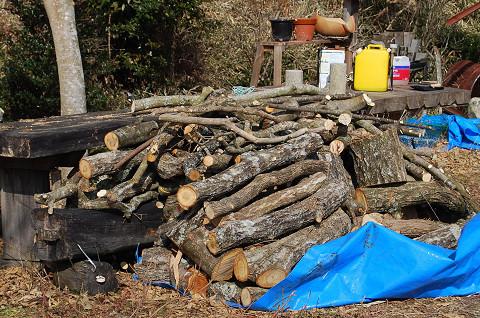 切り出した薪の山