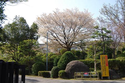 葵中の正門