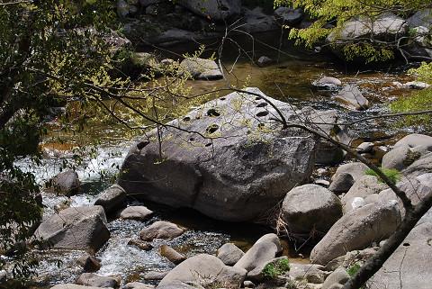 渓流のポットホール