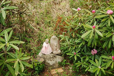 シャクナゲと石仏